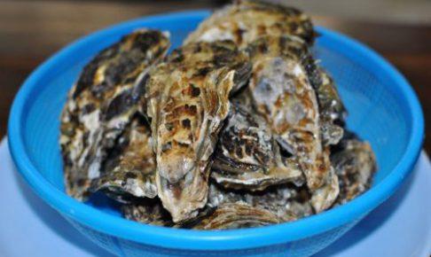 牡蠣料理始めました!!