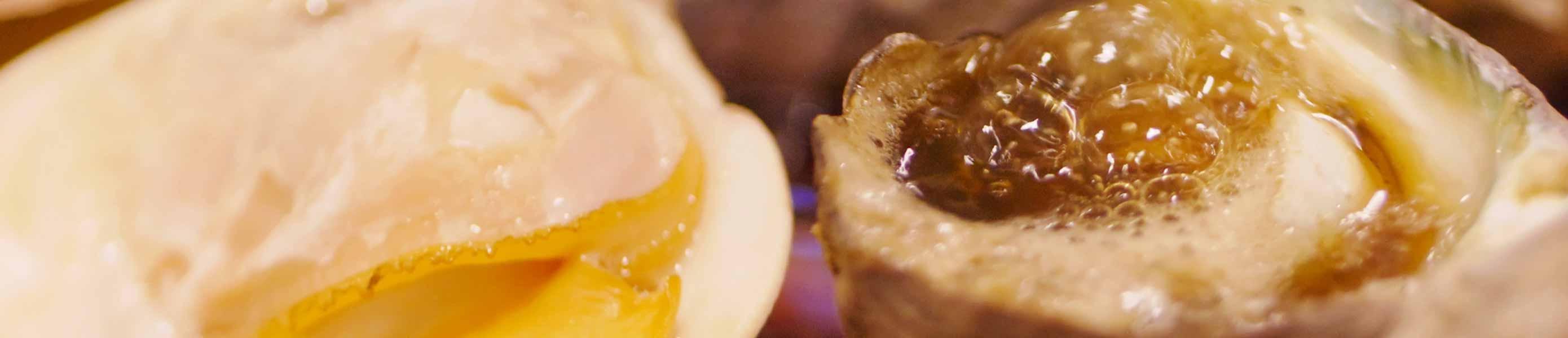 海外・国内からツアー観光に人気の岡山にある牡蠣料理・海鮮料理の磯メニュー