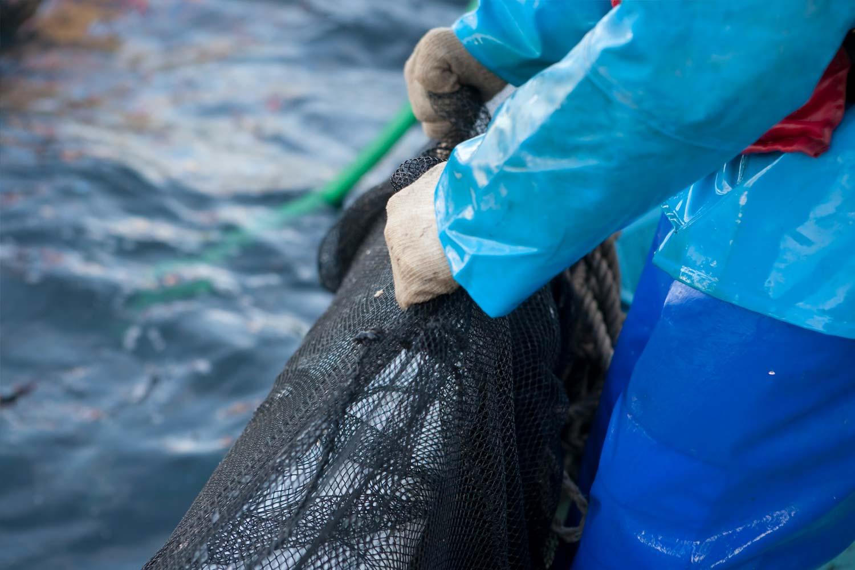 海外・国内からツアー観光に人気の岡山にある牡蠣料理・海鮮料理の磯イメージ想い