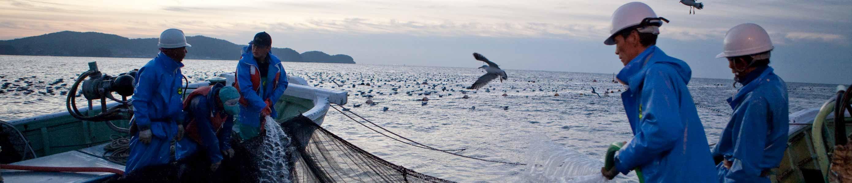 海外・国内からツアー観光に人気の岡山にある牡蠣料理・海鮮料理の磯会社情報