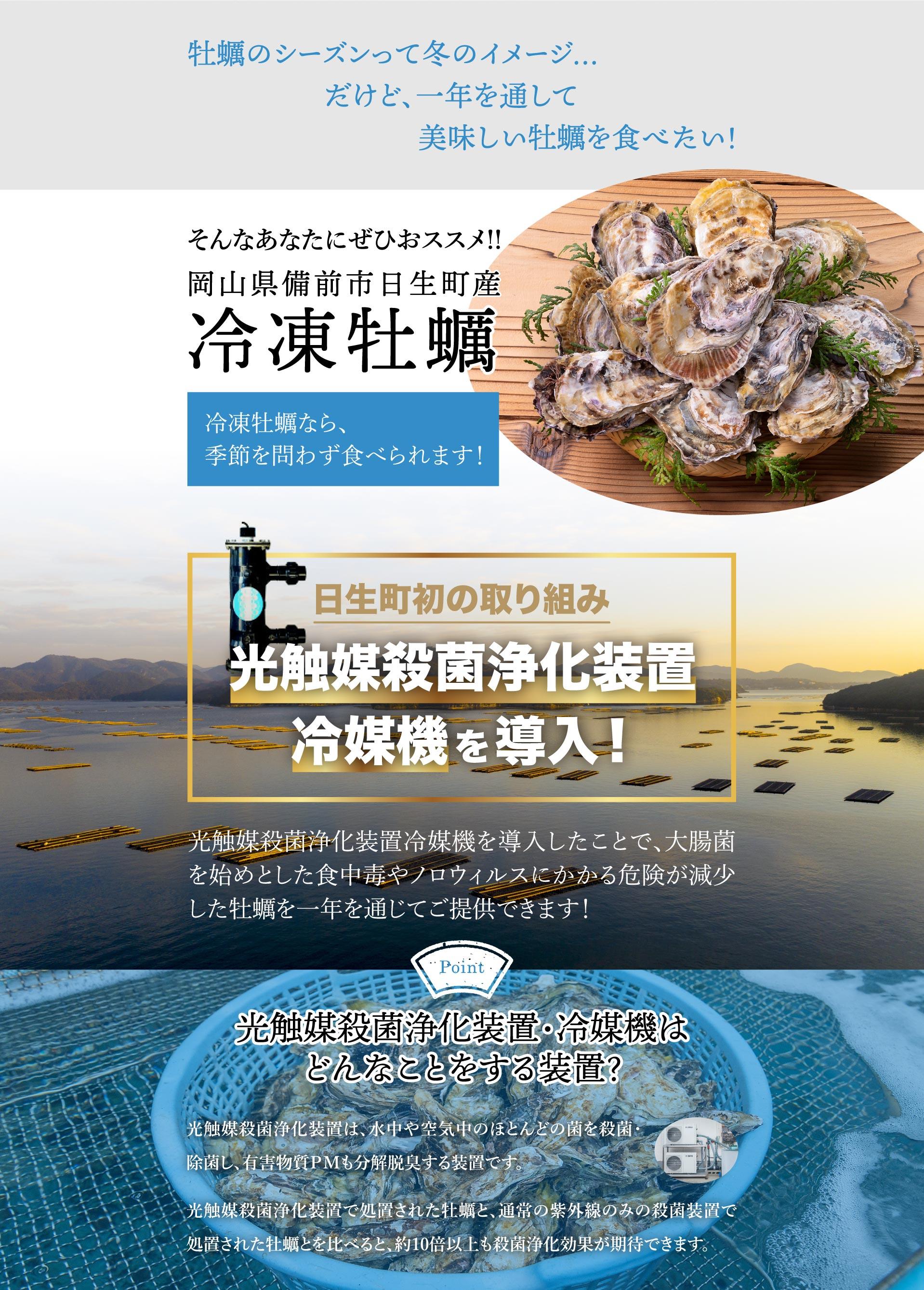 冷凍牡蠣販売・牡蠣の磯煮販売ページ3