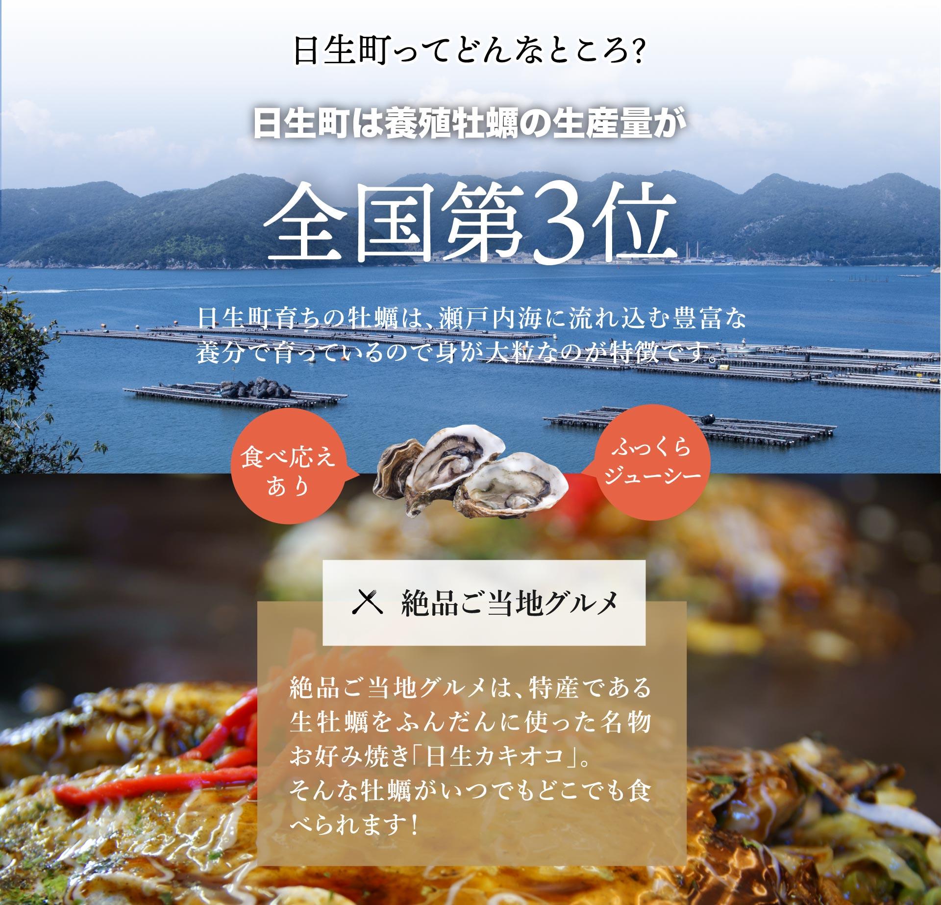 冷凍牡蠣販売・牡蠣の磯煮販売ページ5