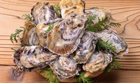 殻付き冷凍牡蠣(加熱調理用)販売始めました!