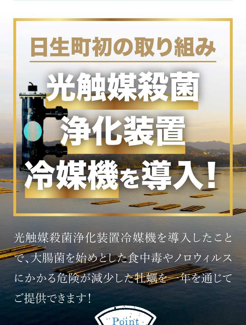 冷凍牡蠣販売・牡蠣の磯煮販売ページ4